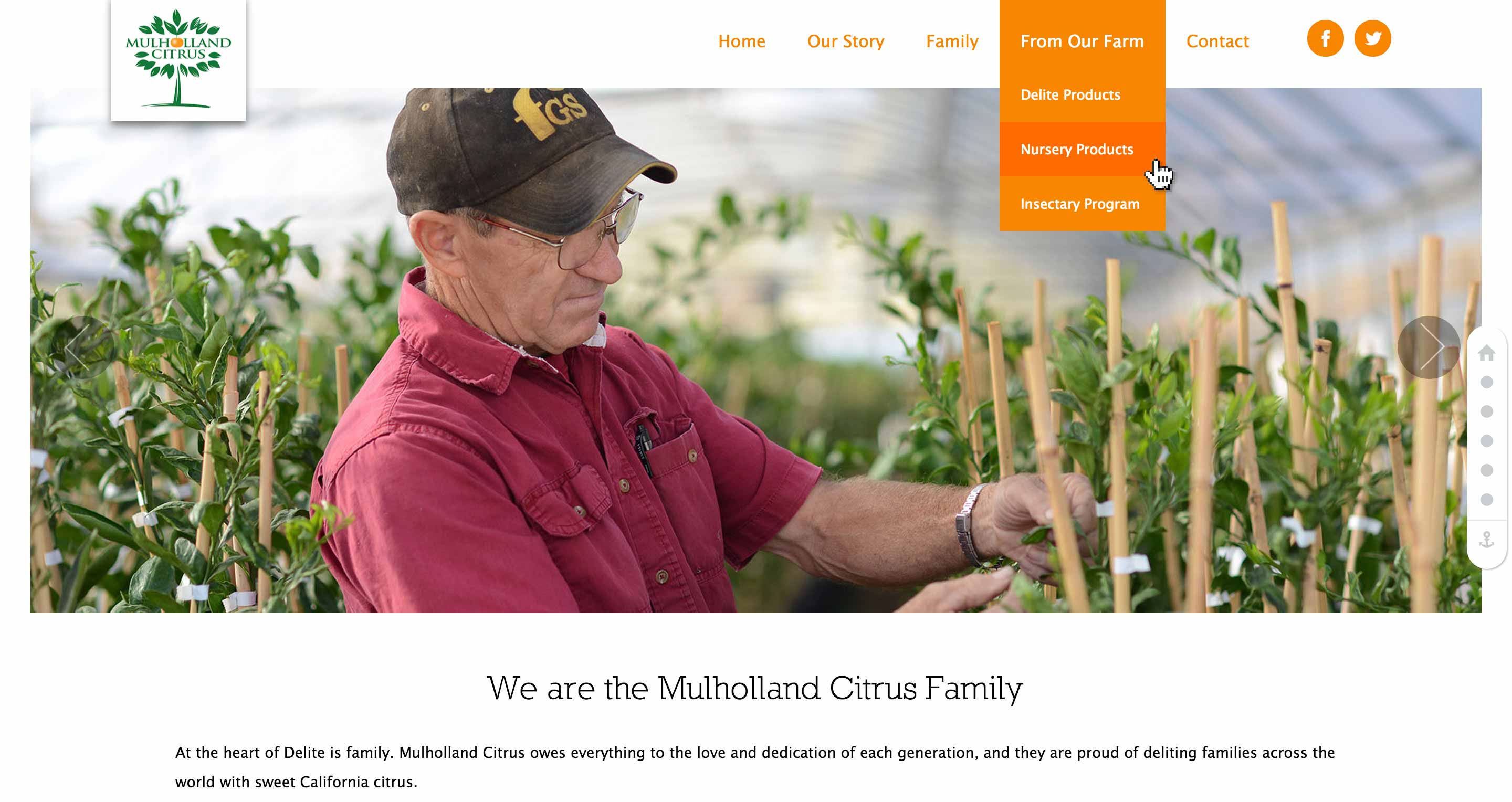 Screen shot of the Mulholland Citrus Wordpress web site