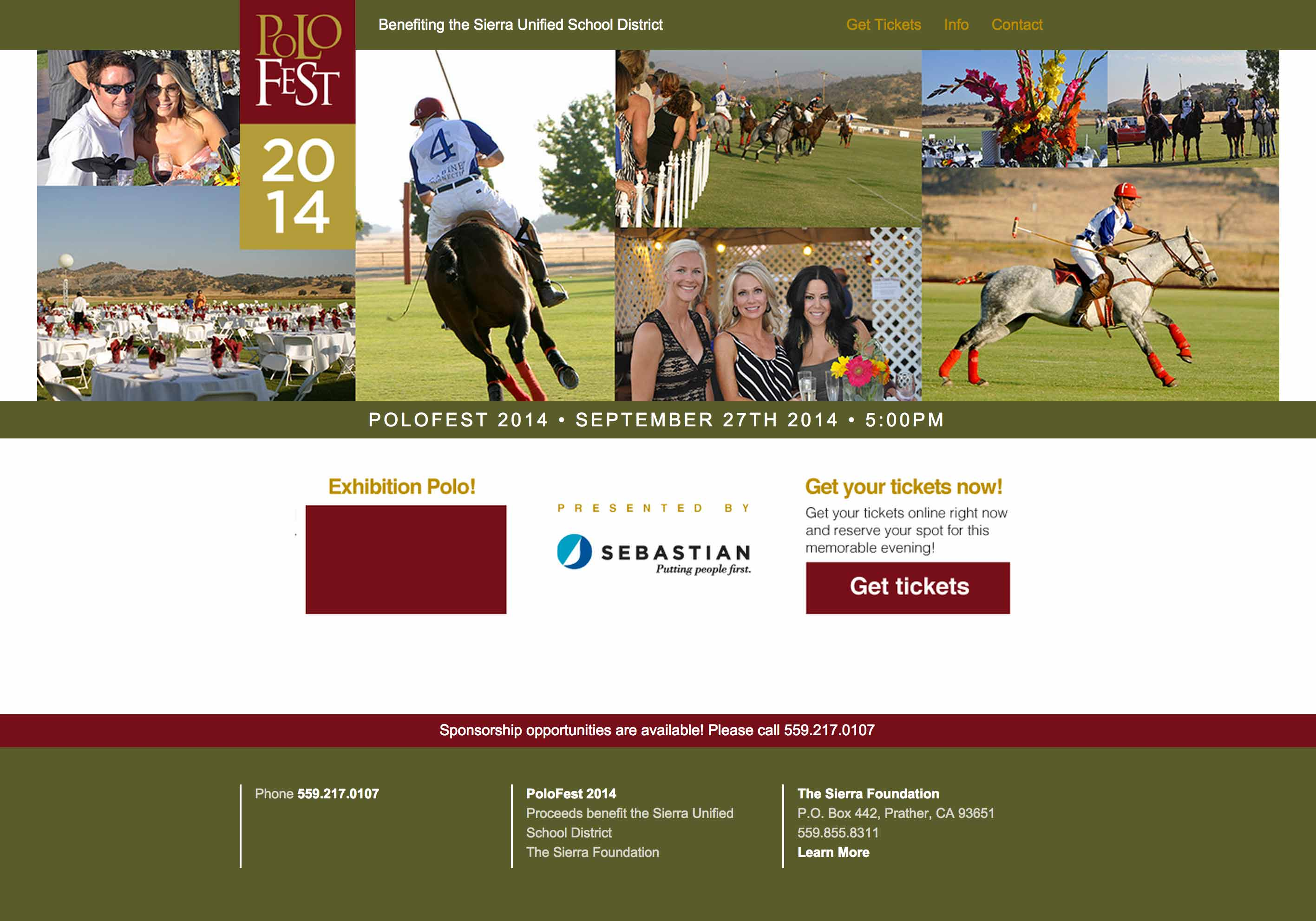 Screen shot of the Polofest web site by Lee Powers.